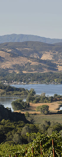 EXPERIENCE VINEYARDS IN THE ROLLING HILLS OF CLEARLAKE OR WATERSPORTS AND FISHING ON THE LAKE